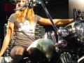 motor-bike-expo-2015-info-utili-afe7ceb4cf6271db5341d9c01b7c2451
